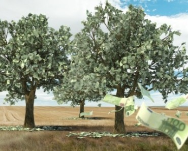 Money does grow on trees