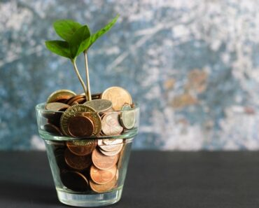 rent and roll money income plant growing from change