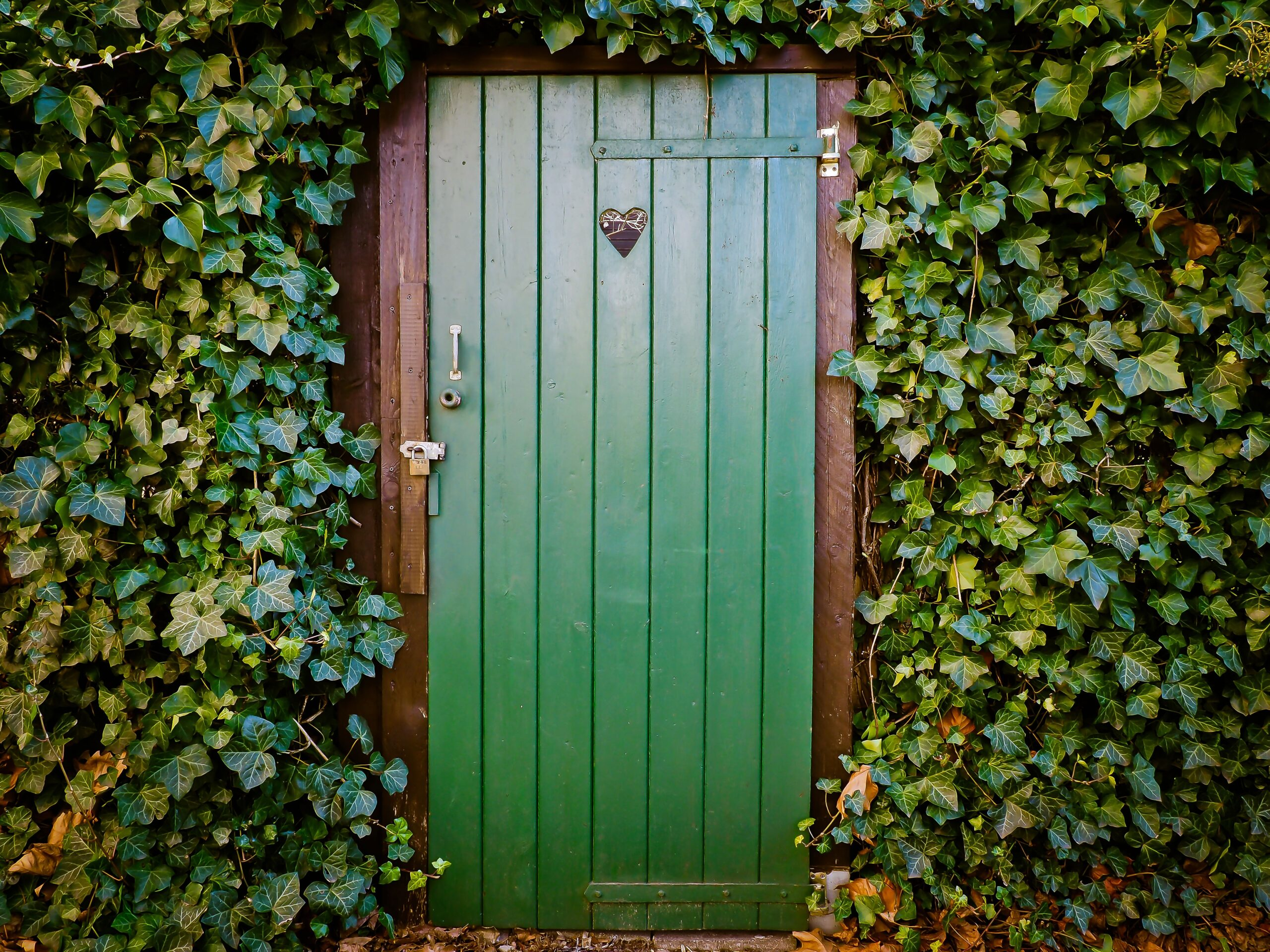 multifamily exit strategy,, green door surrounded by vines